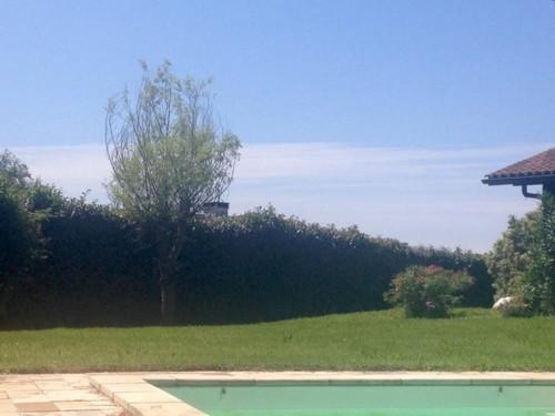 Belle maison avec piscine en location vacances à ASCAIN